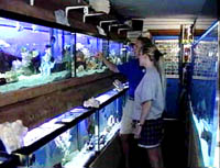 aquarium store mn owned full line pet store serving